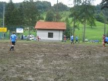 Livek 2011_1