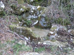 Po starih breginjskih poteh_1 (izvir Mostičarke)