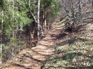 Po starih breginjskih poteh_12 (pot med sv. Marjeto in Prekopo - križada s potjo ki pelje do izvira Klatnice)