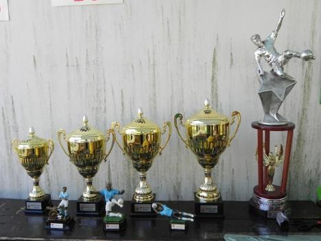 Pokali za najboljše ekipe in posameznike. Ob njih tudi prehodni pokal.
