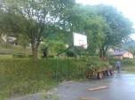 Obsekanje krošenj dreves_1