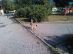 Betonaža reg med asfaltom in robniki_1