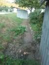 Odstranitev stare žične ograje_2