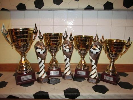 Pokali 2014