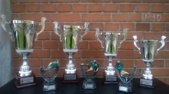 Pokali 2015